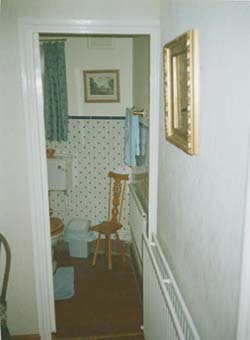 Moss Cottage Upstairs Toilet